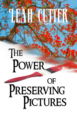 Book Cover: The Power of Preserving Pictures