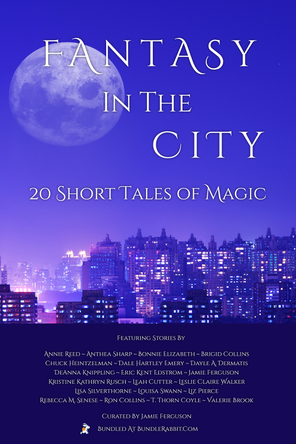 Book Cover: The Fantasy In The City Bundle