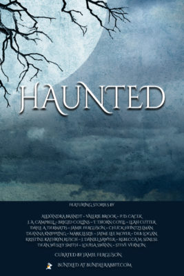 Book Cover: Haunted Bundle