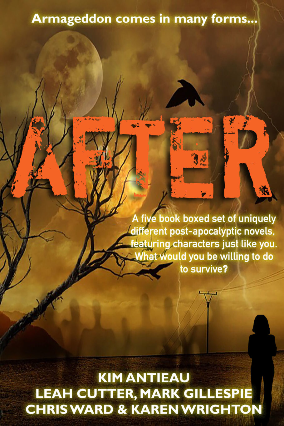 Book Cover: AFTER bundle